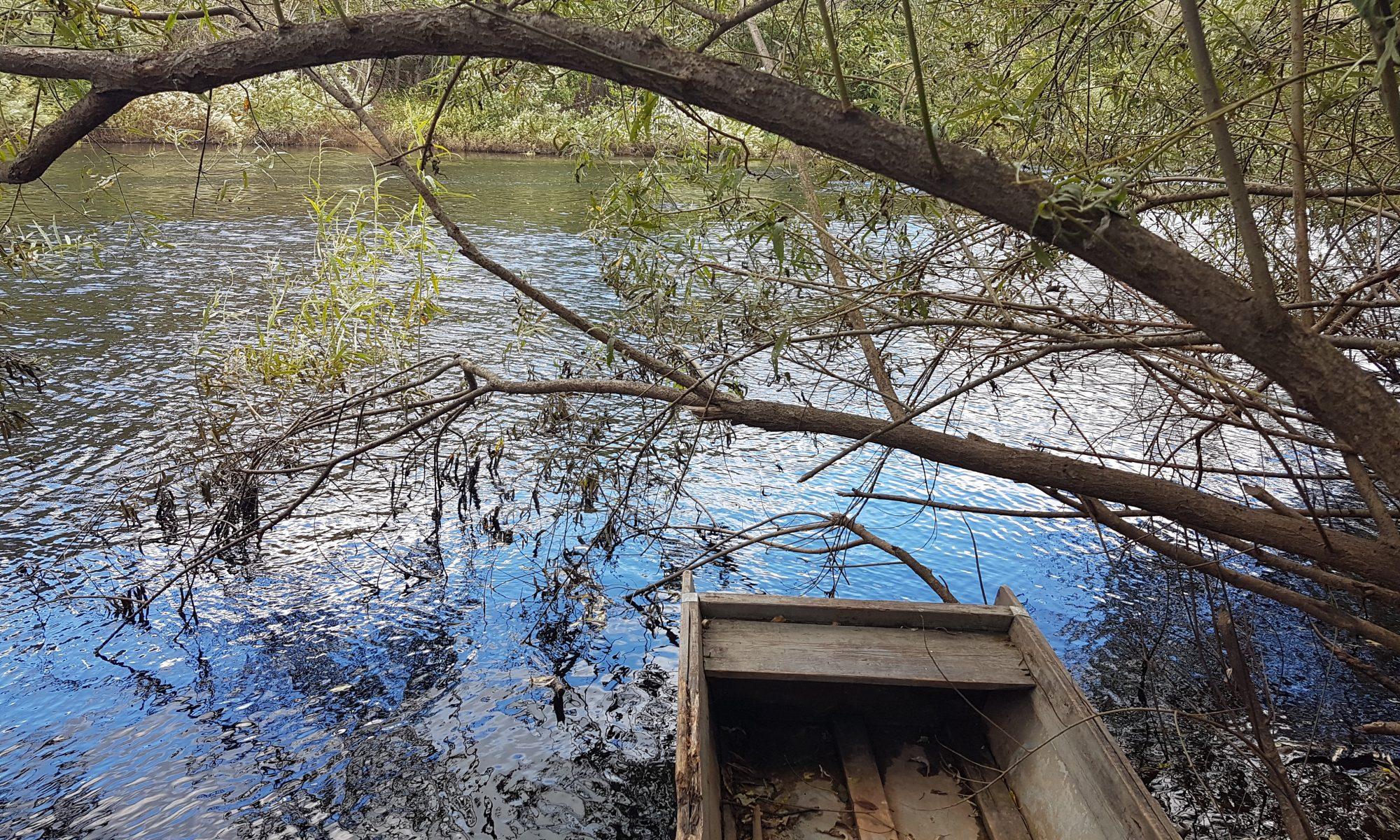Лодка напротив Бежан